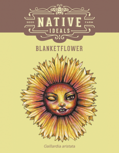 Blanketflower