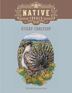 Sticky_Curlycup